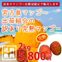 【送料無料】【30%off】宮古島マンゴー出荷組合の訳あり完熟マンゴー...