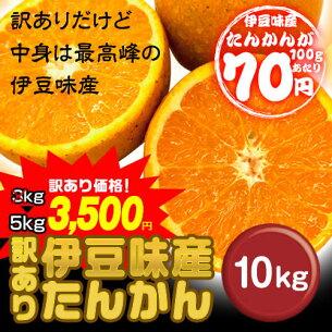 ビタミン タンカン フルーツ