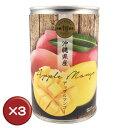 【送料無料】沖縄県産アップルマンゴー缶詰 3個セット マンゴー 沖縄マンゴー マンゴー缶[食べ物>フルーツ>マンゴー]