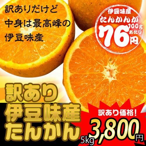 沖縄県伊豆味産 たんかん 訳あり 5kg
