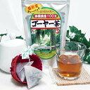 種入りゴーヤー茶 ティーバッグ 30包入 沖縄産 国産 無農薬 ゴーヤ茶 うっちん沖縄 健康茶 にがうり ティーパック 共役リノール酸