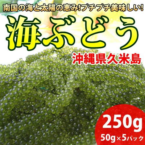 海ぶどう 生 50g×5パック 沖縄県久米島産 海ブドウ タレ付き