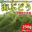 久米島産 海ぶどう 生 50g×5パックセット タレ付き