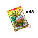 らくちんちゃんぷる-の素 ゴーヤ-(15g×5)×48袋(2...