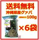 【グァバ茶】比嘉製茶 100グラム×6袋セット / 沖縄県産グァバ 国産 健康茶