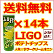 LIGO POTATO CHIPS 14本セット(緑)リゴーポテトチップス サワークリームオニオン味 / 送料無料 輸入菓子 輸入 おかし リゴー チップスターに似たLIGOポテトチップス 送料込み
