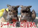 そのシーサーは本物ですか [工芸品]最後にお持ちいただきたいシーサー・沖縄陶器やちむん/金色・風水グッズ・玄関・縁起物・魔除け/置物