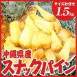 沖縄県産スナックパイン 約1.5kg(サイズお任せ1〜3玉)