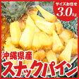 沖縄県産スナックパイン 約3.0kg(サイズお任せ4〜6玉)
