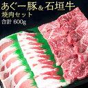 石垣牛&あぐー豚 焼き肉セット《贈答用化粧箱入り》...