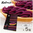 【送料無料】 べにいもたると 6個入×5箱セット 沖縄土産 沖縄 お土産 べにいも たると 紅芋タルト 紅いも タルト ナンポー