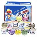 ブルーシールアイスクリーム ブルーシールアイス ブルーシールアイスクリームギフト ブルーシールア
