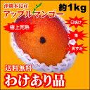 訳ありマンゴー沖縄産送料無料1キロ【訳ありマンゴー】【わけありマンゴー】【送料無料】