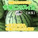 【発送11月〜7月】【沖縄今帰仁すいか】...