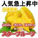 沖縄産 スターフルーツ 約1kg 【発送8月中旬?12月】沖縄産のトロピカルフルーツ・スターフルーツ