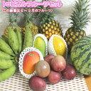 お楽しみ福袋10000円コース 【送料無料】 お任せフルーツ...