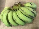 バナナ「ゴールデンスイートバナナ」約2kg 【発送7月~11月】 沖縄県産