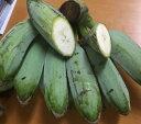 【発送8�11月】沖縄県産・調理用バナナ5kg(約25�40本)【常温発送につきチルド商品と同梱不可】