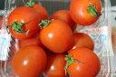【発送1〜3月】プチッと食感、甘いミニトマトエコファーマー上地和彦さんのミニトマト 5P【沖縄県産野菜・ミニトマト】