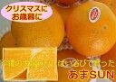 【発送12月中】あまSUN 【優品】 約5kg (みかん 天草 ゼリー)