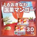 【週末お買い得セール】【豊作価格!!】【送料無料】【JAおきなわ選果マンゴー】沖縄