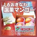 JAおきなわの選果基準をクリアした正規選果品です。【沖縄産 マンゴー フルーツ トロピカルフルーツ】