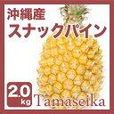 【発送4月下旬?8中旬】 沖縄産 ボゴールパイン(スナックパイン)  2?3玉 (約2kg)一つづつ