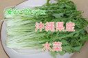 安心・フレッシュ沖縄県産野菜水菜 1束(約200g)【発送 11〜6月】