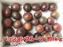 【週末お買い得セール】【半額以下】あと30個限定】思い切り価格 沖縄県産 パッションフルーツ(Sサイ