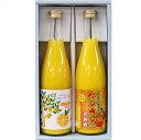沖縄アロエのギフト【タンカン果汁&完熟シークヮーサー果汁】