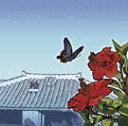 【送料無料】インストゥルメンタル:サウンドインテリア沖縄【沖縄 琉球 音楽 CD】
