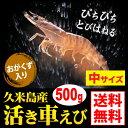 Ebi08_500g_icon