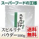 【送料無料】【スーパーフードの王様】スピルリナパウダー100g【微細藻類 スピルリナ 免疫力アップ 抗ウイルス効果 粉末】