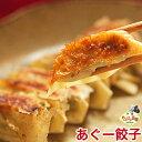 ショッピングぎょうざ 沖縄 アグー豚 あぐー豚 餃子 ぎょうざ お取り寄せ 芸能人 グルメ 肉 【12個入り】