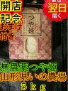 【29年産 無農薬米】山形県いのファームつや姫☆5kg送料無...