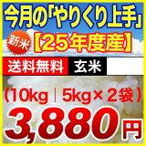 【  】【やりくり上手】毎月いろいろ食べ比べて自分好みの お米 を探して下さい米/富山県産てんたかく10kg ★玄米<精選玄米>富山県産 てんたかく10kg(5kg×2袋) 10k