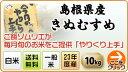 【5月のやりくり上手】島根県産 きぬむすめ(10kg|5kg×2袋)【送料無料・23年度産】
