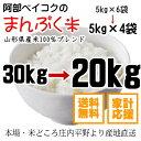 米 送料無料白米 『まんぷく米』 20kg【5kgX4袋◎】 国内産★送料無料→(沖縄を除く)