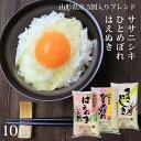山形30年産 銘柄米(はえぬき/ひとめぼれ/ササニシキ)5割...