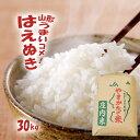 山形30年産 はえぬき 30kg 送料無料 無洗米/白米/玄...