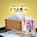 無洗米 送料無料 5kg こつぶ姫 5kg袋×1ケ 【別途送料加算地域あり】