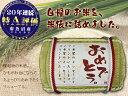 【25年産】縁起ものの米俵ギフト。南魚沼コシヒカリ3キロ(お米の日対象外商品)