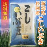 【(一部地域を除く)】新潟県長岡産こしいぶき 5kg 〔26年産〕 新潟でしか栽培されていない若い世代に人気の銘柄米♪新潟から産地直送でお届けします♪
