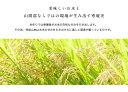 【玄米】【令和元年産】佐賀県産 天使の詩 10kg(5kg×2) 【九州産】【佐賀米】