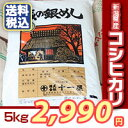 お買い得!新潟県産 コシヒカリ 5kg