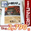 【楽ギフ_のし】【米】新潟県産こしひかり(コシヒカリ)5kg 送料無料 おいしいお米