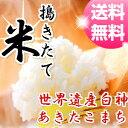 【30年産】【米 10kg 送料無料】秋田県産 あきたこまち...