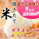 【平成28年産】【米 5kg 送料無料】秋田県産 あきたこまち 玄米 5kg 一等米 我が家で育てた