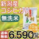 【米】【29年産】無洗米 吟精 新潟産コシヒカリ10kg(5kg×2袋)【送料無料】【新潟ケンベイ】