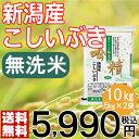 【米】【29年産】無洗米 吟精 新潟産こしいぶき10kg(5kg×2袋)【送料無料】【新潟ケンベイ】